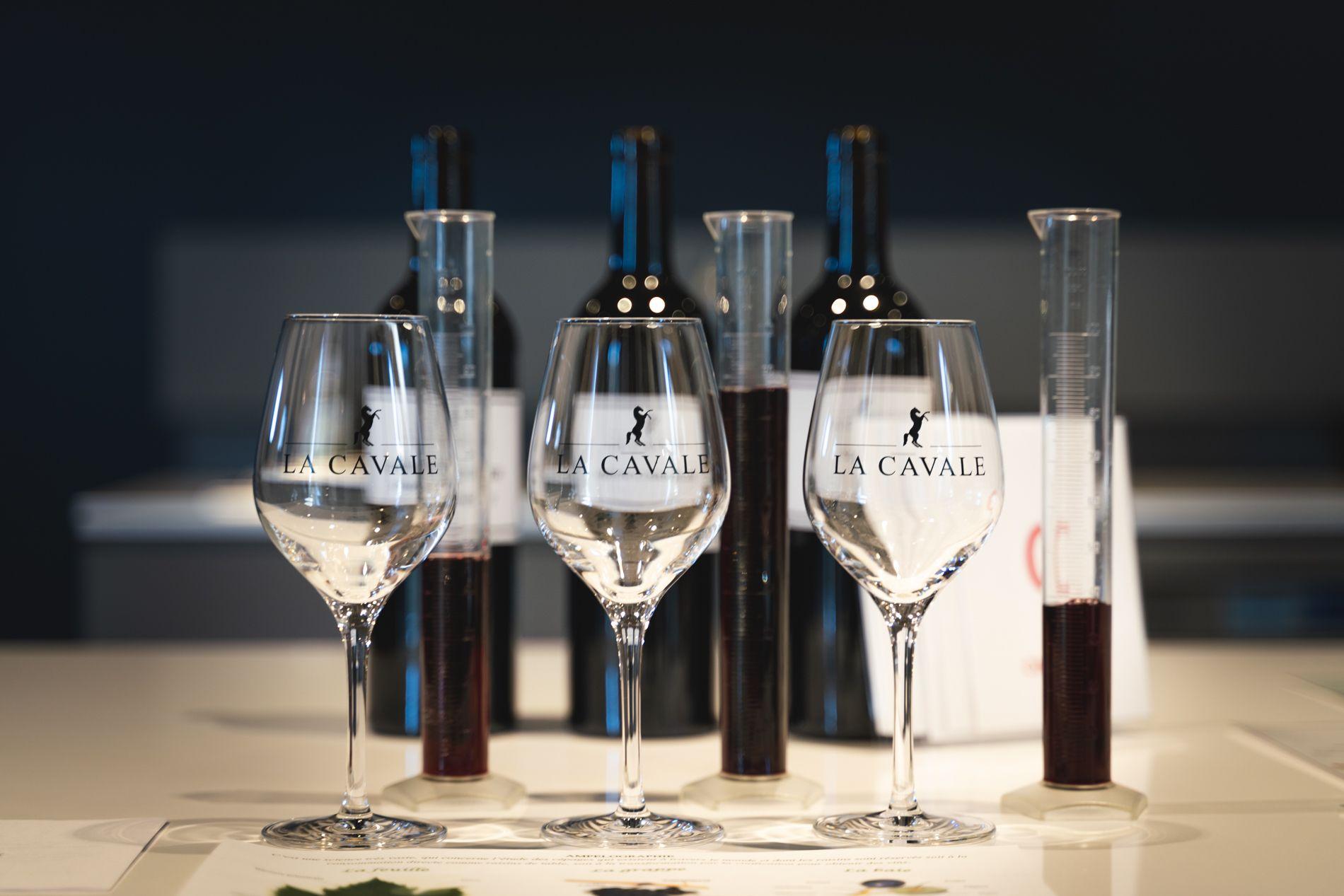 Ateliers Oenotouristiques - Wine tourism workshops